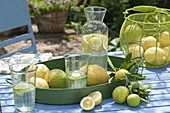 Tray and basket of freshly picked lemons, jug