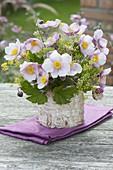 Anemone hupehensis 'September charm' (autumn anemone) bouquet