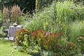 Perennial flowerbed with Helenium 'Rubinzwerg' (Sun Bride), Echinacea