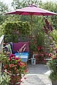 Cozy lounge corner under the umbrella, Pelargonium