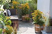 Lounge corner between yellow Rudbeckia fulgida 'Goldsturm' flowers