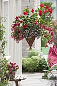 Self made Basket Lamp with Calibrachoa Celebration 'Strawberry'