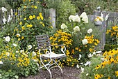 Seating area on white-yellow bed, Hydrangea paniculata 'Limelight'