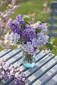 Small bouquet of branches of Prunus 'Accolade' (ornamental cherry)