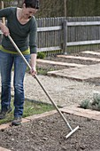 Prepare the vegetable bed and plant the casing of parsley