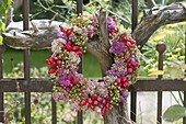 Autumn wreath with Sedum (Fetthenne) and Rosehips (Rosa)