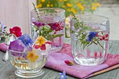 Ice cubes with frozen, edible flowers in glasses