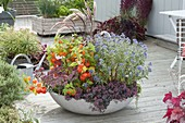 Broad bowl with autumn magic planting