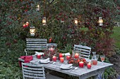 Autumn table decoration with lanterns in wreaths of rose twigs