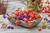 Wooden bowl with physalis (lantern flower) and berries of callicarpa