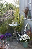 Autumnal grasses balcony, Miscanthus sinensis, Miscanthus