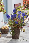 Lush bouquet of Aconitum, branches of Malus