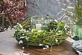 Bind autumn wreath out of green dogwood branches