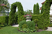 Hedges and archway from Thuja (tree of life) on the edge of a terrace