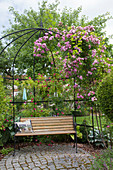 Arbor planted with pink, small, round granite paved terrace, bench