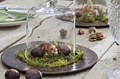 Forest table decoration with animal figurine Fox on moss under glass bell