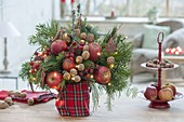 Christmas bouquet of abies and pinus branches