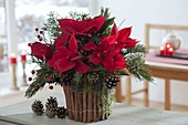 Christmas bouquet in vase with cinnamon sticks