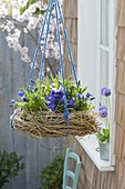 Wreath of twigs and grasses hung as a blue planted nest