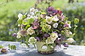 Lush bouquet made of Helleborus orientalis with branches