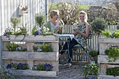 Terrace with planted Euro pallets as privacy screen