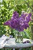 Violet Syringa bouquet in preserving jar