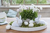 White tray with bellis, Easter bunnies with pearl necklaces