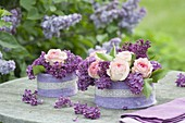 Fragrant flower varieties from Syringa (lilac) and Rosa (rose)