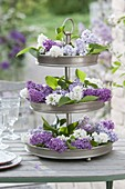 Metal etagere with flowers of syringa (lilac) as a table decoration
