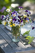 Small viola cornuta (horn violet) bouquet in a glass