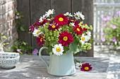 Rot-weisser Strauss aus Chrysanthemum coccineum (Bunten Margeriten)