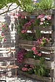 Pallets rebuilt as privacy screens with built-in planters
