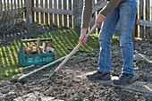 Prepare soil before sowing vegetables