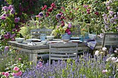 Table laid between flower beds with lavender and pink