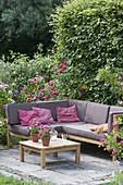 Lounge-Ecke auf kleiner Terrasse zwischen Rosen