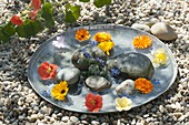 Flat zinc bowl with edible flowers and pebbles in the water