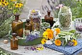 Kräuter trocknen für Tee, Kosmetik und Wellness