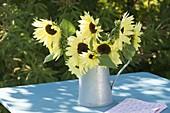 Bouquet of Helianthus annuus 'Garden Statement' (Sunflower)