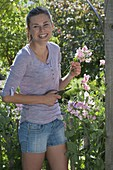 Woman cutting Lathyrus odoratus (sweetpea) bushes