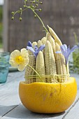 Young corn cobs (Zea mays) tied together and with flowers