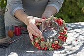 Wreath made of rowan berries, ornamental apples and stonecrop