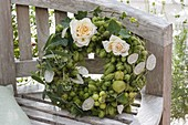Green hops wreath with rose petals, Humulus lupulus (hops)