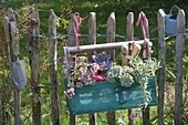 Small tool box planted with succulents hanged on fence