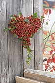 Heart tied with pink multiflora (mini rosehip) and hedera