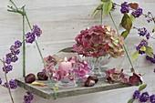 Einfaches Brett als Regal an die Wand gehängt, Glasschalen mit Blüten
