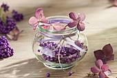 Small decoration in mason jar, berries of Callicarpa