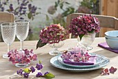 Autumn table decoration in the conservatory, blossoms of Hydrangea