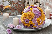 Muted ball of chrysanthemum (autumn chrysanthemum)