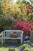 Seat on the autumnal bed with shrubs and perennials