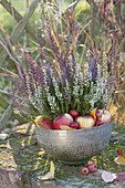 Silver bowl with Calluna Trio 'Beauty Ladies' (bud heather)